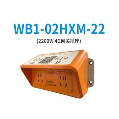 乐充充两路五口输出智能充电插座适用于物业小区停车库